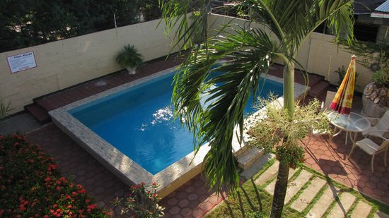 Guesthouse Amice: swimming pool from veranda Guesthous Amice Paramaribo