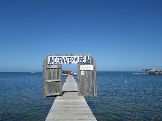 Bay Islands Underwater Museum: Dock