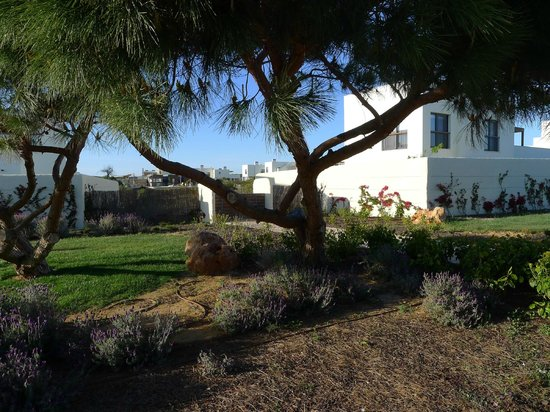 Martinhal Sagres Beach Resort & Hotel:                   garden view villa