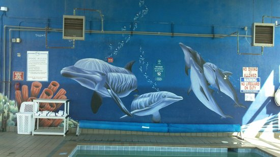 Dolphin Inn: Beautiful Mural at the indoor pool