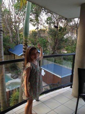 Byron Beachcomber Resort:                   Perfect!