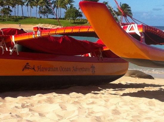 Hawaiian Ocean Adventures: Our beautiful hand built canoe - Kaau Moana