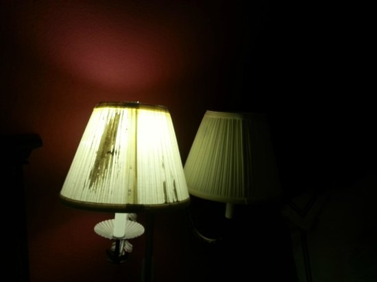 Lexington Hotel- Indianapolis Airport:                   Dirty torn lampshade