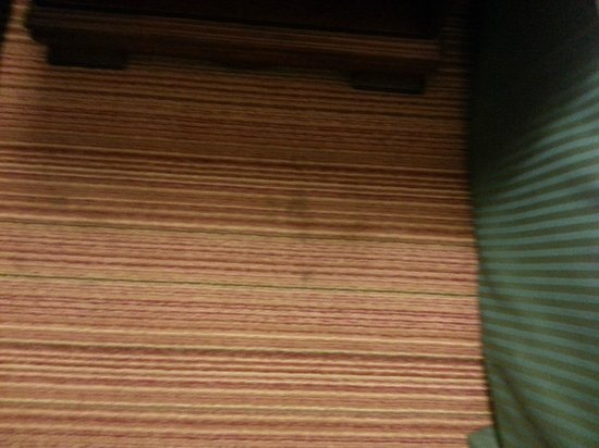 Radisson Hotel Indianapolis Airport:                   Stains on walls