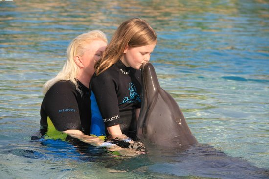 Dolphin Bay:                   Kisses
