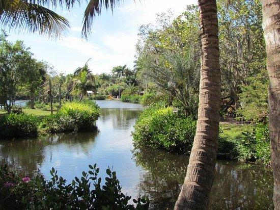 Botanical Gardens Picture Of Naples Zoo At Caribbean Gardens Naples Tripadvisor