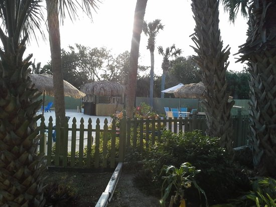 Tropical Inn Palm Bay:                   pool view