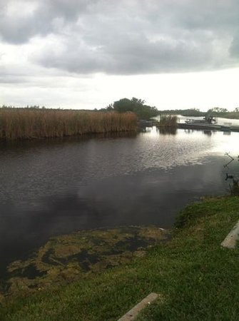 Capt Mitch's - Everglades Private Airboat Tours: great weather!