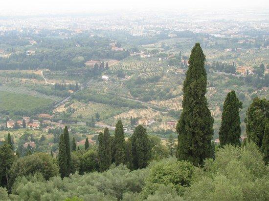 Tree Experience - Parco Avventura Vincigliata :                   Hilltop view