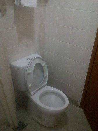 อมารีส โฮเต็ล แมงกา ดัว สแควร์:                   Toilet