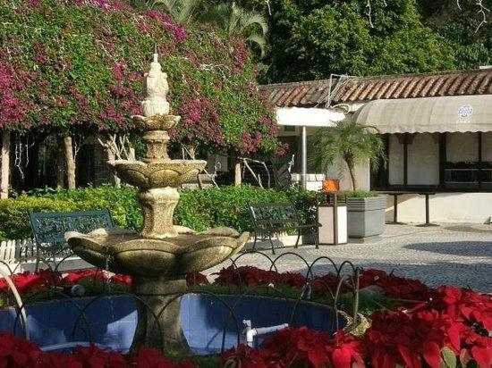 Pousada de Coloane Beach Hotel & Restaurant: Jardim