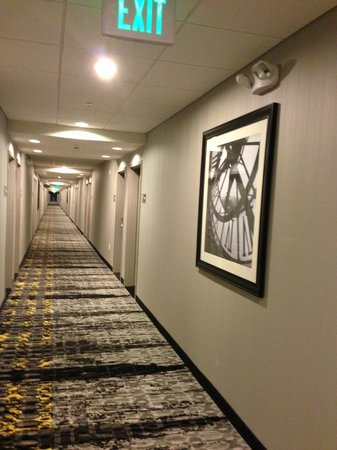 Hampton Inn & Suites Columbia / South:                   hallways