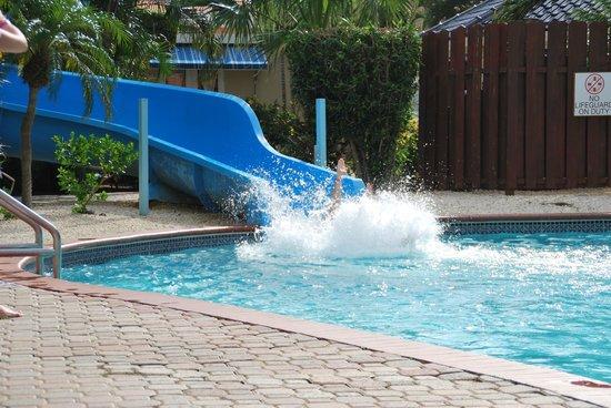Tropicana Aruba Resort & Casino: People having fun on the slide