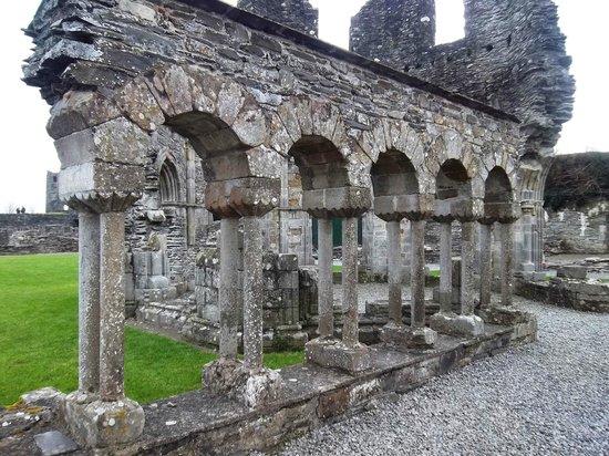 Mellifont Abbey: Mellifont ruins