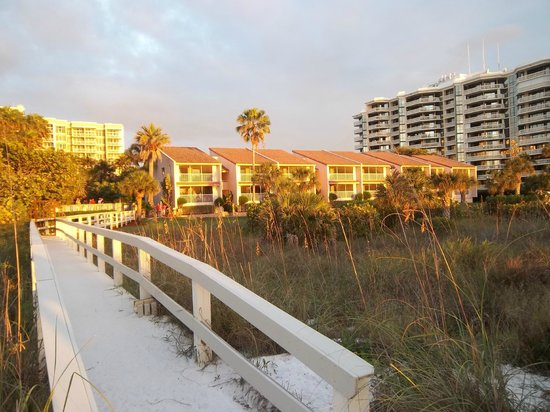 Club Regency of Marco Island :                   View From the Beach