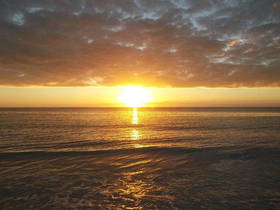 Club Regency of Marco Island :                   Beautiful Sunset