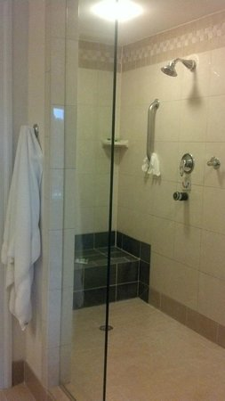 Marriott's SurfWatch:                   master bedroom shower (big enough for 10 people!)