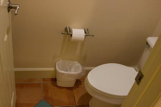 Grande Villas Resort :                   Toilet within the confines of a small closed off room in the bathroom