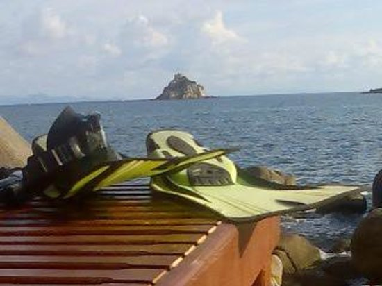 Baan Talay Koh Tao:                   Shark Island from the sun bed