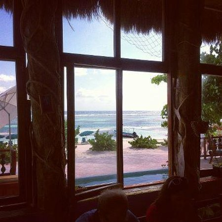 Nacional Beach Club & Bungalows:                   View from the restaurant & bar