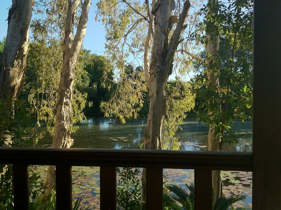 Billabong Bed & Breakfast:                   View from our room!