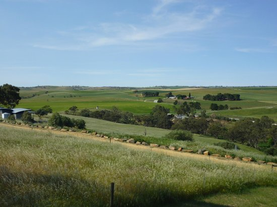 Barossa Pavilions:                   View from the room