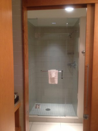 Greektown Casino Hotel: Shower