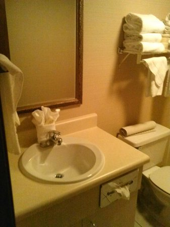 Park Tower Inn: bathroom