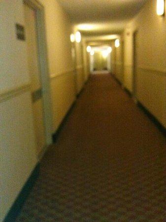 Park Tower Inn: hallway