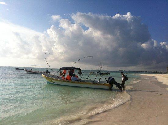 Hotel Akumal Caribe: Akumal Beach