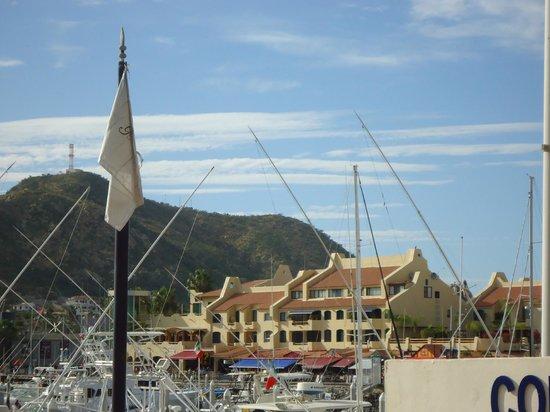 Tesoro Los Cabos: Marina view