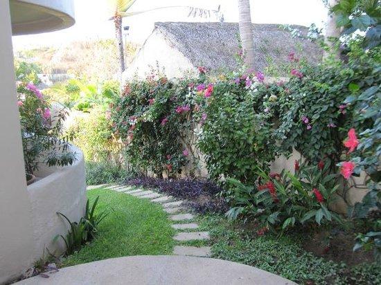 Villa Sol y Mar:                   back yard