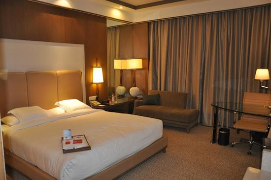 新德里奧卡哈皇冠廣場飯店照片
