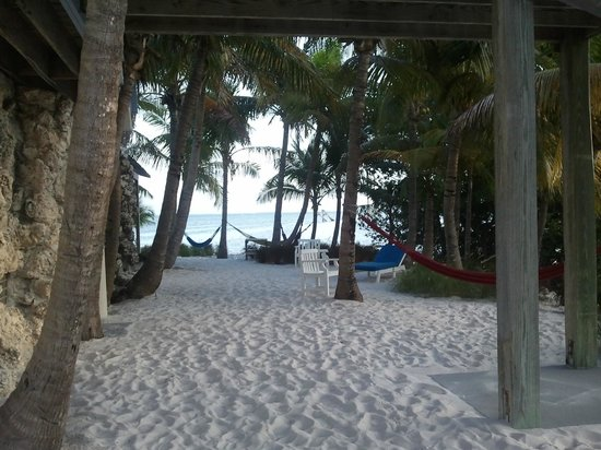 Ibis Bay Beach Resort :                   View outside our door