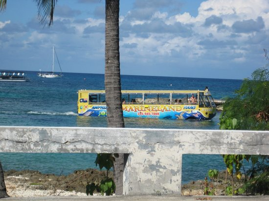 Grand Cayman Cruise Excursions: its a boat--its a bus