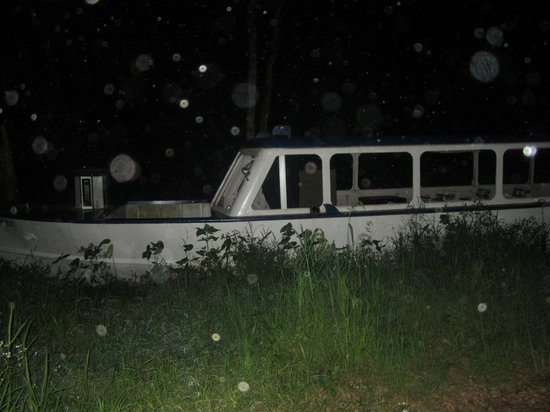 Lost Voyage :                   orbs in front of the boat