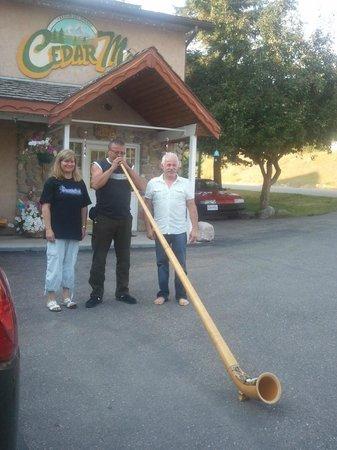 Cedar Motel:                   Surprise alp-horn.