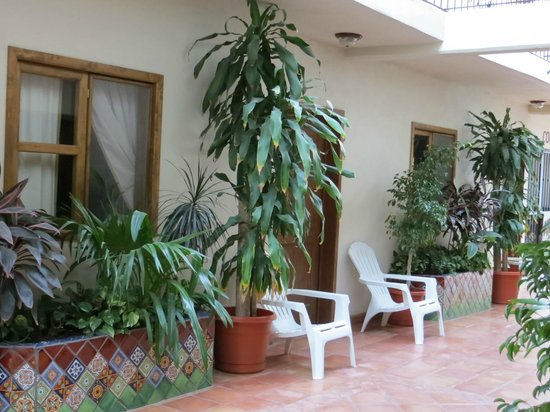 Cabo Cush Hotel : Corridor