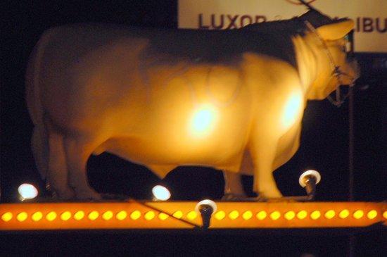 """Golden Steer Steak House:                   THE """"Golden Steer"""""""