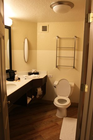 La Quinta Inn & Suites Memphis Primacy Parkway:                   Bathroom very clean and cozy