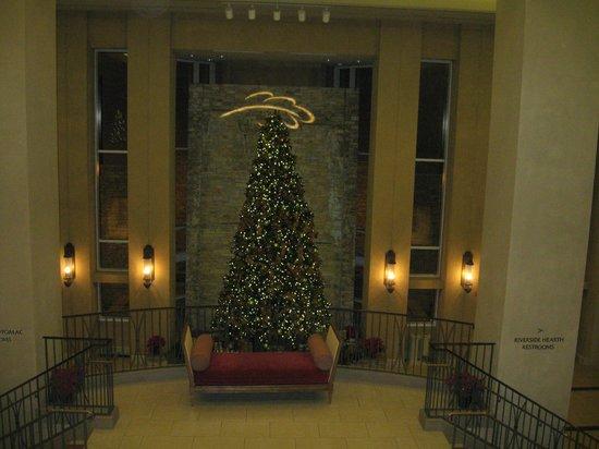 Lansdowne Resort and Spa:                   Lobby Christmas Tree