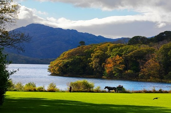 Ireland: Killarney Lakes