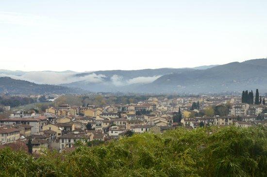 Villa La Vedetta:                   View from hotel Gardens