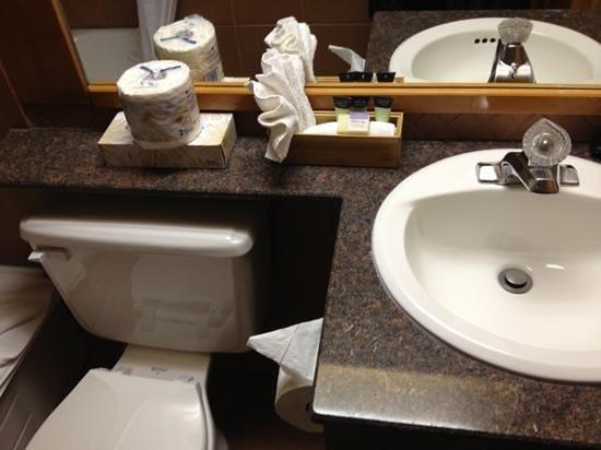 هيدن ريدج ريزورت: bathroom