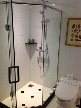 Grand Hilton Seoul:                   small bathroom for a 5 stars hotel