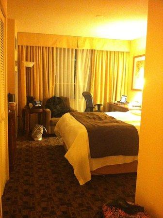 Chelsea Hotel, Toronto: Room