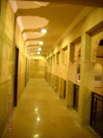 Hotel Pansari Palace : Hallway