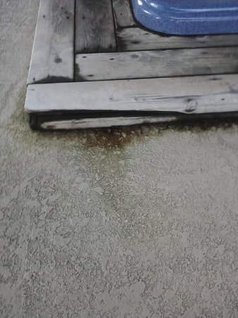 The Holiday Inn Niagara Falls:                   Rotting dirty wood around Hot Tub
