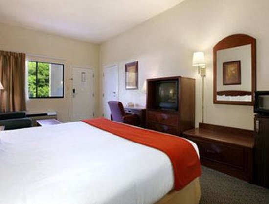 Super 8 Columbia : Guest Room