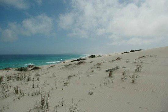 De Hoop Nature Reserve:                   Duenenlandschaft im DeHoop Marine Reserve